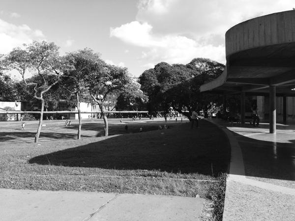 Ciudad Universitaria de Caracas_COLUMNA. Foto_sancheztaffur